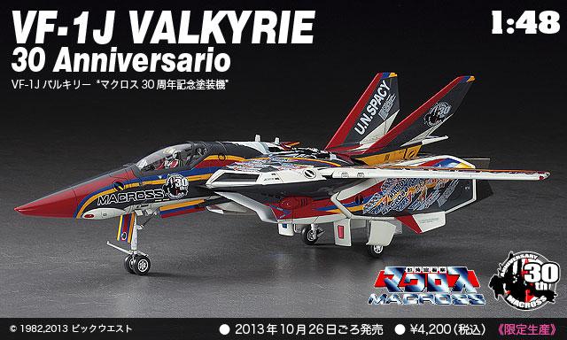 Hasegawa 1/48 VF-1J Anniversario